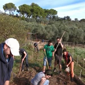 Grup de treball col·lectiu a l'hort d'en Càndido (Foto: Horto Càndido)