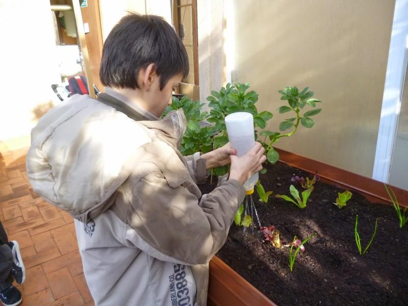 Els alumnes fan pràctiques i tallers de jardineria. Foto: Crespinell