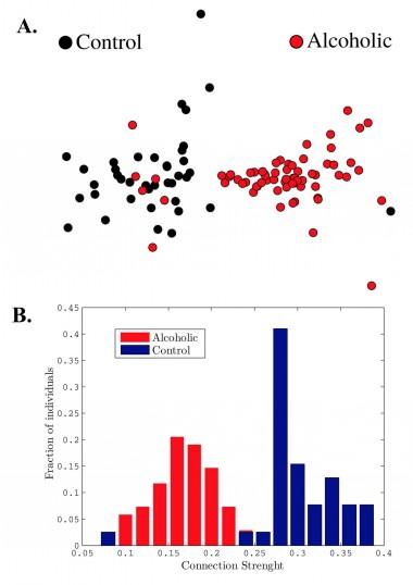 Figura 8: Representació esquemàtica de la distància entre xarxes cerebrals generades a partir de dades experimentals, obtingudes de persones alcohòliques i no alcohòliques.