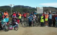 Carril bici del centre entre les 5 propostes del PAM incorporades al projecte de pressupostos 2017